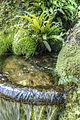 Fountain (8059735533) (2).jpg