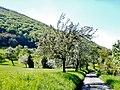 Frühjahr - panoramio (1).jpg