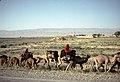 Françoise Foliot - Afghanistan 142.jpg