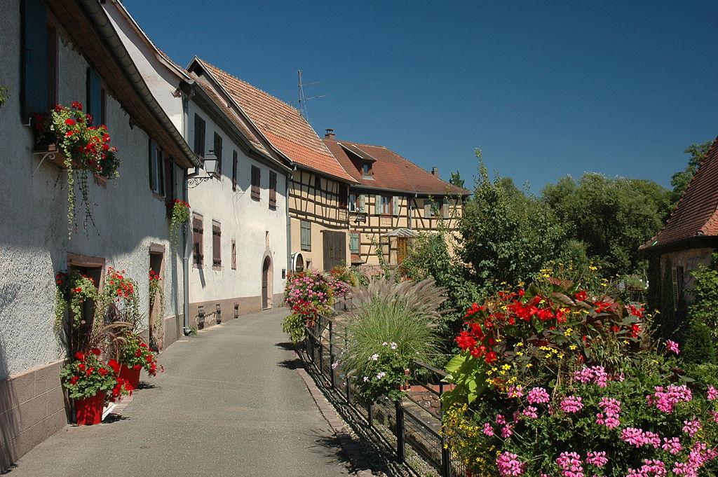 France Alsace Haut-Rhin Bergheim 10