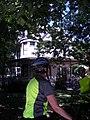 Frank Lloyd Wright Bike Tour (861216059).jpg
