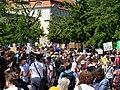 FridaysForFuture protest Berlin 14-06-2019 07.jpg