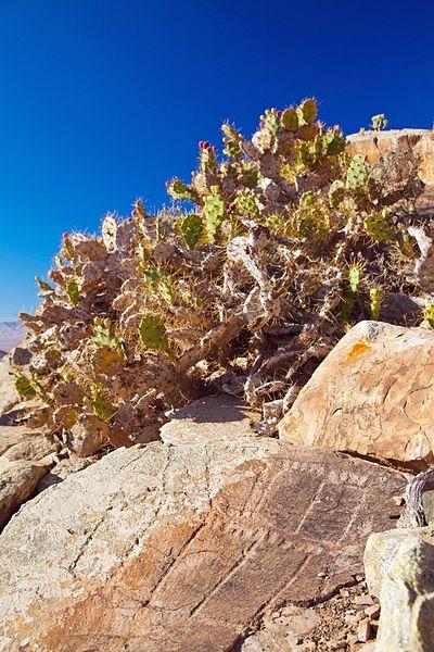 "File:Fuerteventura, mount Tindaya, ancient ""graffiti"" in crude shape of footprints, ""podomorphs"".jpg"