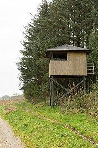 Fugletårn på sydsiden af Årslev Engsø.jpg