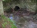 Góry Opawskie, Rezerwat Cicha Dolina 01.jpg
