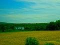 Gallus Slough - panoramio (1).jpg
