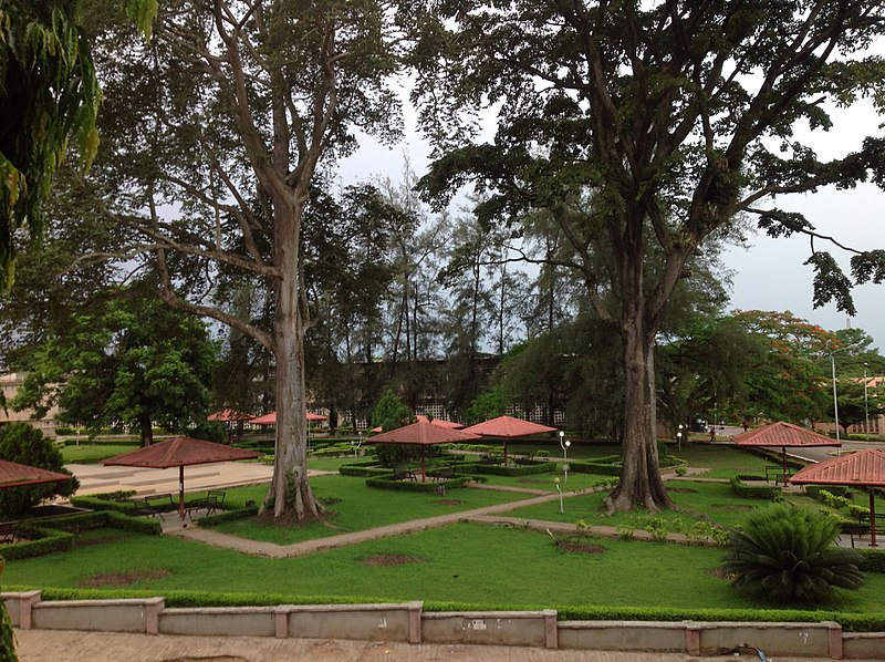 Image result for Gamaliel onosode park university of ibadan