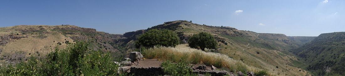 תצפית על שמורת גמלא מגמלא העתיקה. מימין נחל דליות, במרכז נקודת התצפית משביל הנשרים, משמאל נחל גמלא