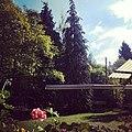 Garden - panoramio (30).jpg