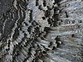 Garni Gorge - columnar basalts.JPG