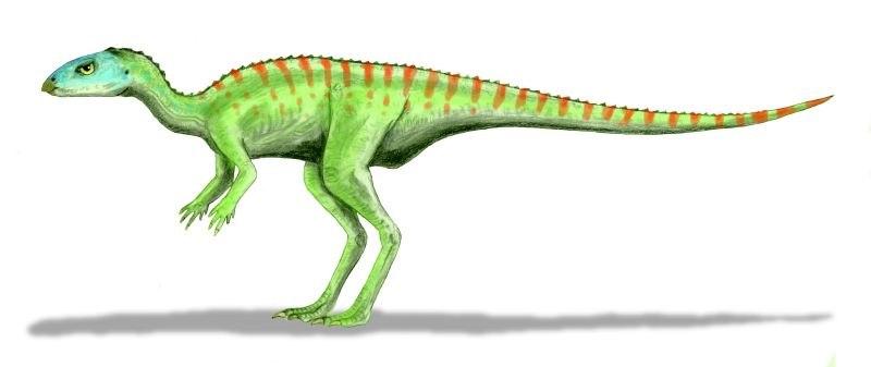 Gasparinisaura BW