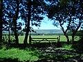 Gate - geograph.org.uk - 204711.jpg
