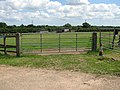 Gate into paddock - geograph.org.uk - 1385695.jpg