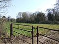 Gate to Field and Attleborough Wood - geograph.org.uk - 377845.jpg