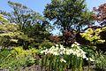 General view - VanDusen Botanical Garden - Vancouver, BC - DSC07358.jpg