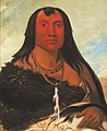George Catlin - Cháh-ee-chópes, Four Wolves, a Chief in Mourning - 1985.66.162 - Smithsonian American Art Museum.jpg