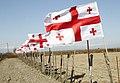Georgian Flags in Davitiani.jpg