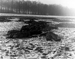 German soldiers lie dead on the ground.jpg