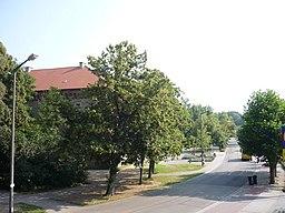 Ludwigsring in Germersheim