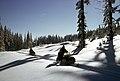 Gifford Pinchot National Forest, snowmobiling Rd 83 (35529847823).jpg