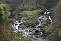 Glen Lyn Gorge - geograph.org.uk - 1200904.jpg