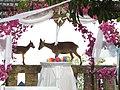 Goat getting married in Cerrogordo.jpg