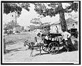 Goat wagon peddler LCCN2001705689.jpg