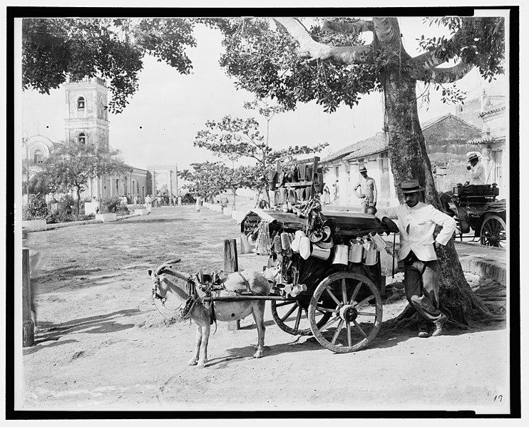 File:Goat wagon peddler LCCN2001705689.jpg