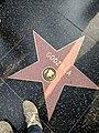 Godzilla Hollywood Star.jpg