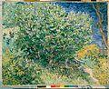 Gogh, Vincent van - Lilac Bush.jpg