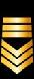 Grade Marine tunisienne E8.png