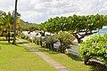 Grand Anse Main Rd, The Lime, Grenada - panoramio.jpg