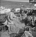 Grimsby Trawlers- Everyday Life With the Fishermen, Grimsby, Lincolnshire, England, UK, 1945 D24801.jpg