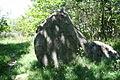 Großsteingrab Dwasieden 16.JPG
