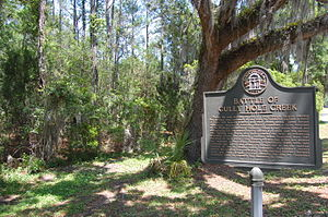 Invasion of Georgia (1742) - State marker commemorating the Battle of Gully Hole Creek