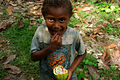 Hadasha Kebu eats a cocoa beans fresh from the pod. (10699713996).jpg