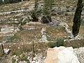 Hadassah Trail P1150498.JPG