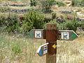 Hadassah Trail P1150507.JPG