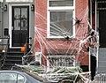 HalloweenSpidersWashington 0388a.jpg
