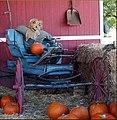 Halloween Wagon 10-26-13 (10561327486).jpg