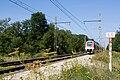 Halte Fontainebleau - Forêt IMG 8553.jpg