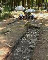 Harzhorn Ausgrabung 2013 Schnitt mit Fundmarkierungen Kalkstein.jpg