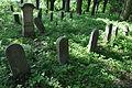 Havlíčkův-Brod-tyfový-hřbitov2013a.jpg