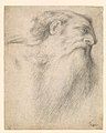 Head of a Bearded Man MET DT4073.jpg