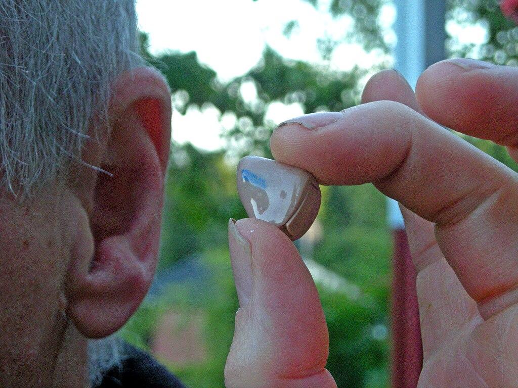 Hearing aid 20080620