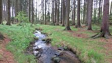Hejnický stream near U Vlka in Staré Bříště, Pelhřimov District.jpg