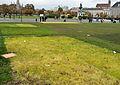 Heldenplatz, devastated lawn 01.jpg
