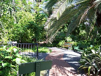 Ernest Hemingway House - Image: Hemingway House Courtyard