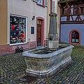 Herrenstraße 30 Brunnen (Freiburg im Breisgau) jm58584.jpg