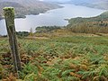 Hillside above Loch Katrine - geograph.org.uk - 583581.jpg